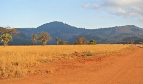 TRANSITO IN SWAZILAND